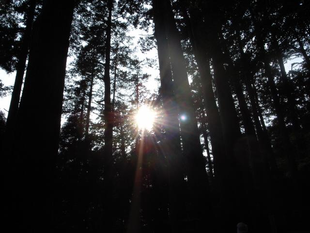 Suns640x480.JPG